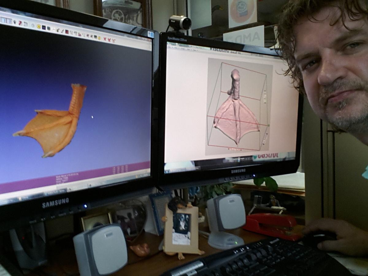 Kaczka, której zostanie wydrukowana silikonowa noga-3