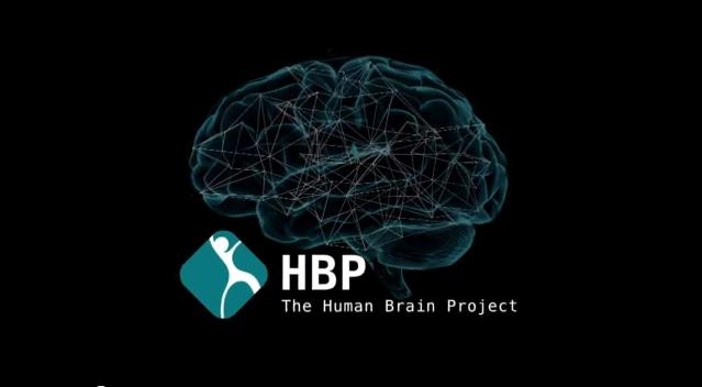 Pierwszy ultra-wysokiej rozdzielczości model mózgu-2