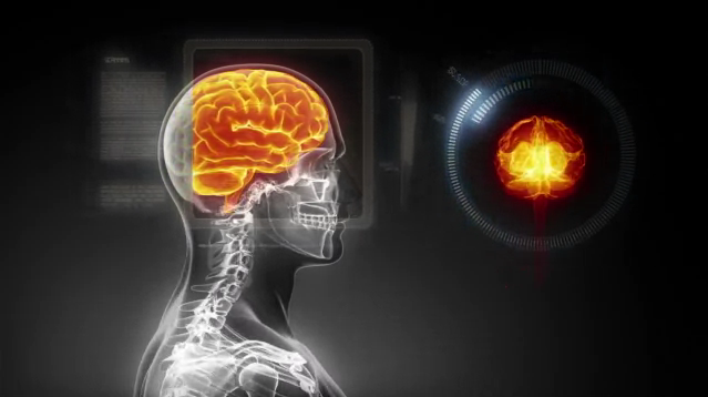 Pierwszy ultra-wysokiej rozdzielczości model mózgu-3