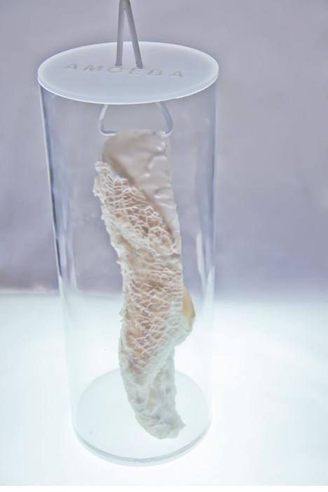 Samonaprawiające się buty do biegania wydrukowane z protokomórek7