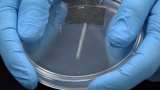 2014 to rok ewolucji medycznej, zostanie wydrukowana 3D ludzka wątroba1