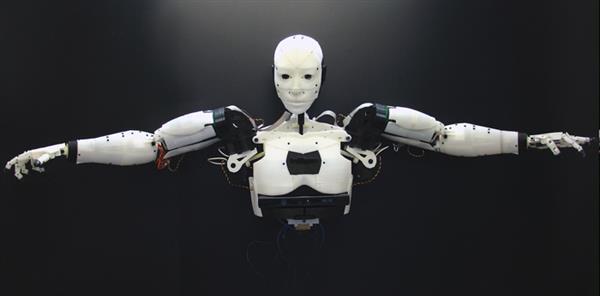 Drukowany robot Inmoove -2