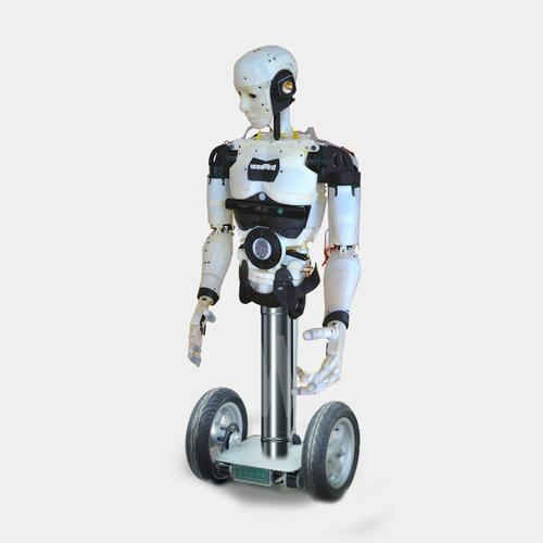 Drukowany robot Inmoove -3